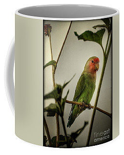 The Lovebird  Coffee Mug