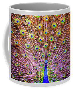 Coffee Mug featuring the photograph The Majestic Peacock by D Davila