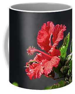 The Mallow Hibiscus Coffee Mug