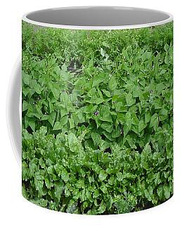 The Market Garden Landscape Coffee Mug