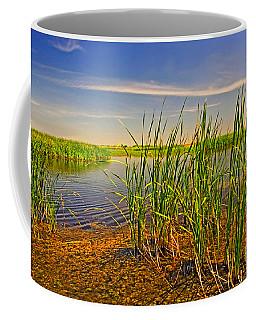 The Marshes Of Brazoria Coffee Mug