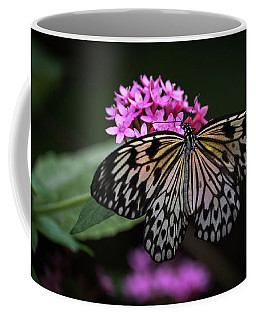 Coffee Mug featuring the photograph The Master Calls A Butterfly by Cindy Lark Hartman