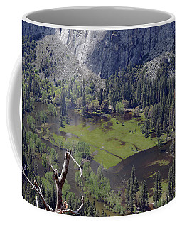 The Meadow From Four Mile Trail Coffee Mug