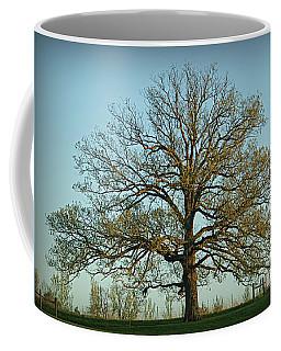 The Mighty Oak In Spring Coffee Mug