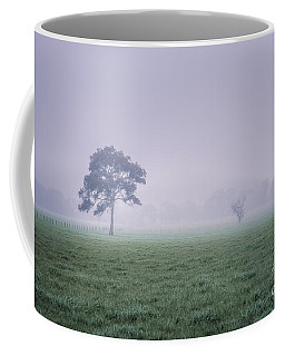 Coffee Mug featuring the photograph The Mist Settles by Ray Warren