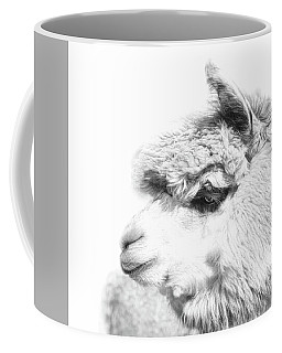 Coffee Mug featuring the photograph The Misty by Robin-Lee Vieira