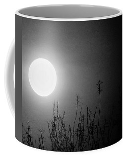 The Moon And The Stars Coffee Mug by John Glass