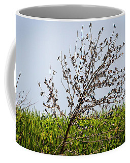 The More The Merrier- Tree Swallows  Coffee Mug