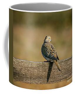 The Morning Dove Coffee Mug