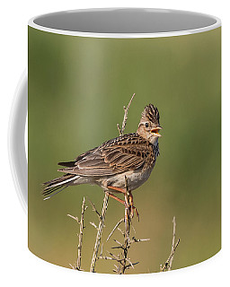 The Morning Lark Coffee Mug
