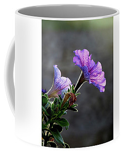 The Morning Sun Coffee Mug