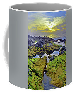 Coffee Mug featuring the photograph The Mossy Rocks At Sunset by Tara Turner