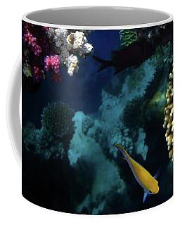 The Mysterious Red Sea Coffee Mug