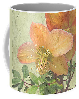 The Mystical Energy Of Nature Coffee Mug