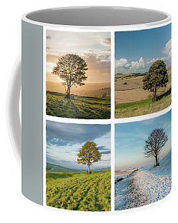 The Nowhere Tree - Four Seasons Coffee Mug