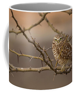 The Observer Coffee Mug