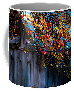 The Old Barn Coffee Mug by Sherman Perry