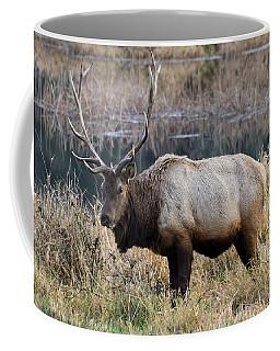 The Old Bull Coffee Mug