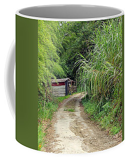 Coffee Mug featuring the photograph The Old Forest Road by Yali Shi