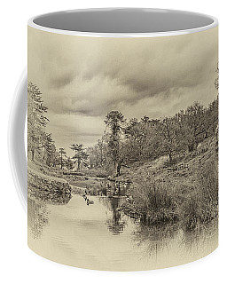 The Old Pond Coffee Mug