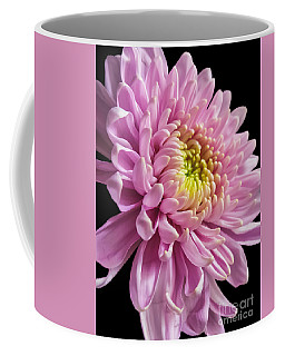 The One And Only Dahlia  Coffee Mug
