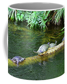 Coffee Mug featuring the photograph The Outsider by Sally Sperry