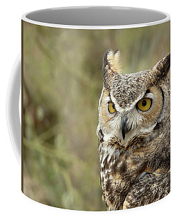 The Owl Coffee Mug