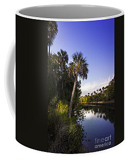 The Palm Stream Coffee Mug