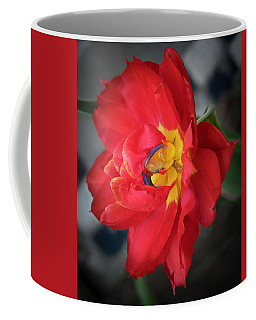 Coffee Mug featuring the photograph The Parrot by Cathy Donohoue
