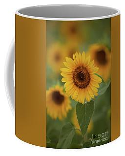 The Patch Of Sunflowers Coffee Mug