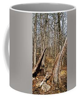 The Path Through The Woods Coffee Mug