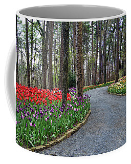 The Path To Spring Coffee Mug