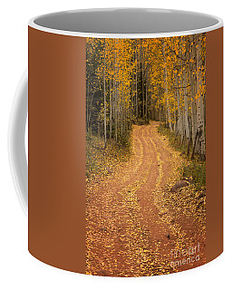 The Pathway To Fall Coffee Mug