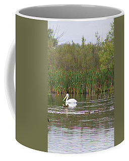 Coffee Mug featuring the photograph The Pelican And The Ducklings by Alyce Taylor