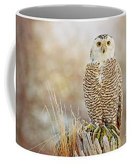 The Perch Coffee Mug
