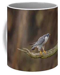 The Peregrine Falcon Coffee Mug