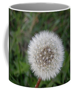 Coffee Mug featuring the photograph The Perfect Dandelion by DeeLon Merritt