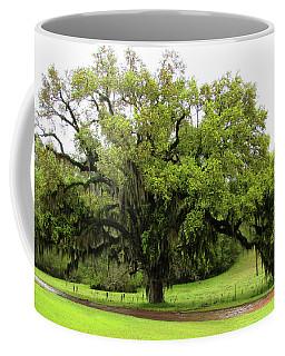 The Perfect Tree Coffee Mug