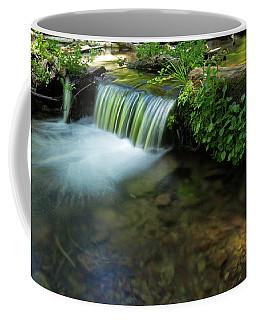 The Poetry Of Nature Coffee Mug