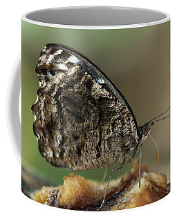 The Pointer Coffee Mug