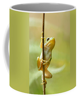 The Pole Dancer - Climbing Tree Frog  Coffee Mug