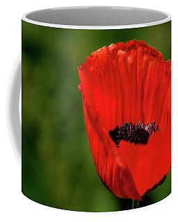 Coffee Mug featuring the photograph The Poppy Next Door by Onyonet  Photo Studios