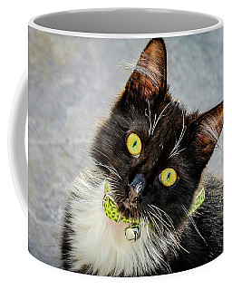 The Portrait Of A Cat Coffee Mug