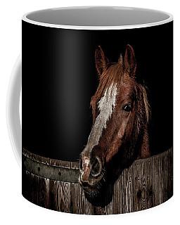 The Poser Coffee Mug