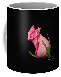 Coffee Mug featuring the photograph The Promise Of New Life by Sue Melvin