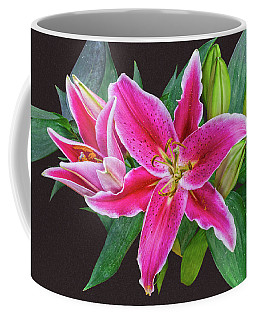 The Pulchritude Of Lady Lily Coffee Mug