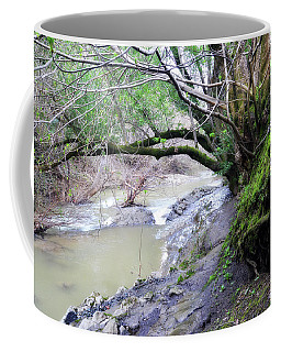 The Quiet Places Coffee Mug by Donna Blackhall