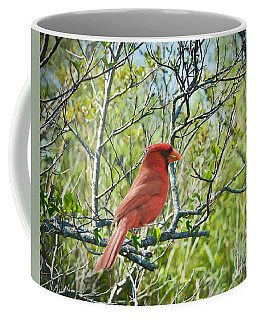 The Red Cardinal Coffee Mug by Judy Kay