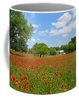 The Red Carpet Coffee Mug