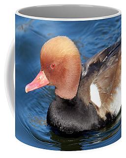 The Red Crested Pochard Coffee Mug